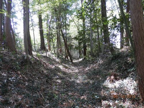 裏山の構堀